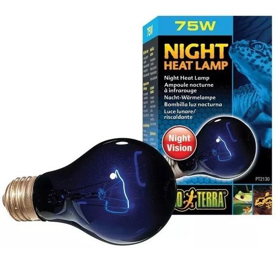 Lâmpada Para Répteis Night Glo Exo Terra 75w