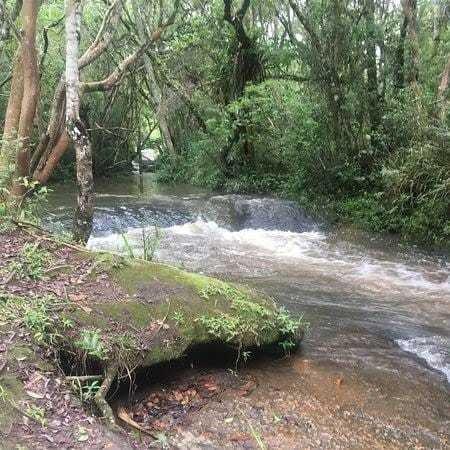 E.p Chacaras 1000 M2 Ibiuna Com Lago, Muita Natureza