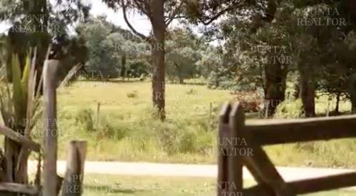 Cabaña En Alquiler Para Dos Personas En El Tesoro De La Barra- Ref: 178