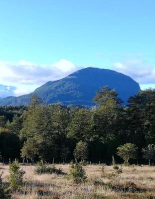 Parcela Con Vista Volcán 5000 M2 Bosque,rio,cascada,laguna