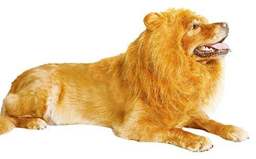 Thedogloveit Sombreros Para Perros Lion Mane, Disfraces Inte