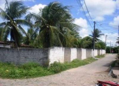 Terreno - Coqueiros - Ref: 1322 - V-291376