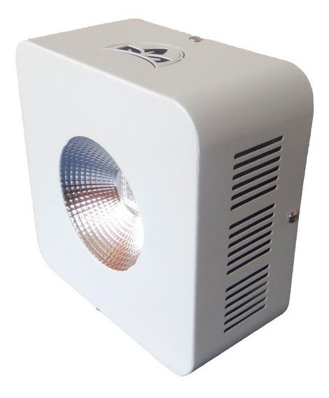 Painel Cultivo Leds Indoor Li-c300 Bivolt Full Spectrum Nf