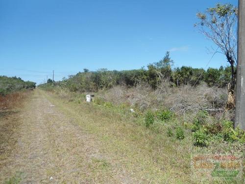 Terreno Para Venda Em Peruíbe, Estancia Sao Jose - 0538_2-321733