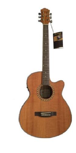 Imagen 1 de 1 de Guitarra Electroacústica Folk Pf25ceq2fshn Palmer