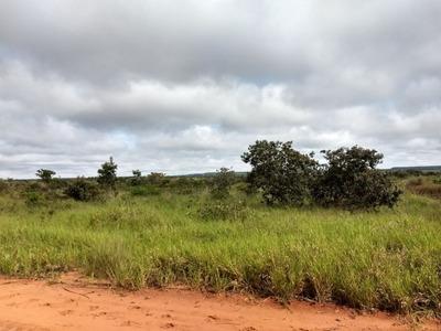 Fazenda A Venda Em Campo Grande Ms (dupla Aptidão) - 845