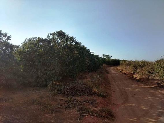 Sítio Para Comprar No Zona Rural Em Nepomuceno/mg - Nep1100