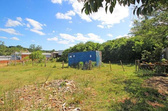 Terreno Para Venda Em Viamão, Sítio São José - Jvt209_2-865957