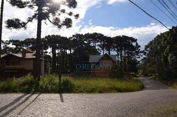 Terreno À Venda, 800 M² Por R$ 480.000,00 - Vila Suzana - Canela/rs - Te0194