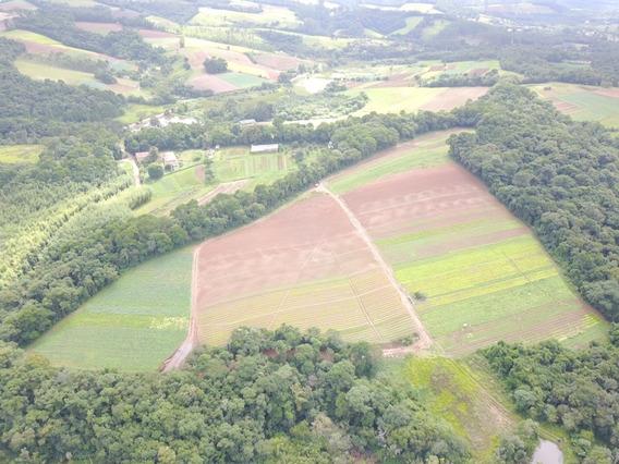 L. Terrenos P/ Construção Em Ibiúna. Confira Nossos Preços.