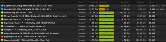 Torrent Seedbox Ilimitada 1 Gbps 200gb De Espaço Em Disco