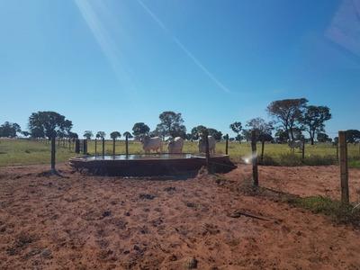 Fazenda A Venda Em Cassilândia- Ms (pecuária) - 1021