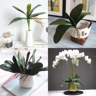 Hojas De Orquídea Artificial Con Raices Para Maceta Planta