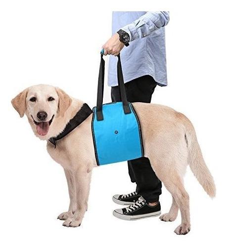 Faja Soporte Para Perro Discapacitado