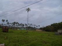 Lote En San Andrés Islas, 5 Km Vía South End. Para Venta