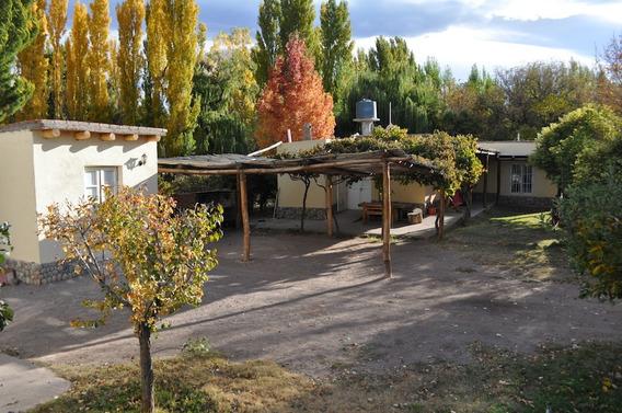 Hosteria, 2 Habitaciones + Cabaña