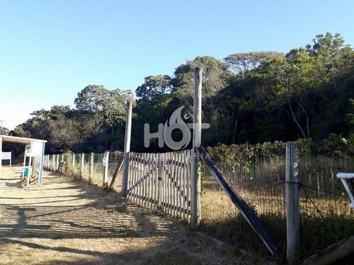 Imagem 1 de 15 de Terreno Comercial - Morro Das Pedras - Ref: 1561 - V-hi72388