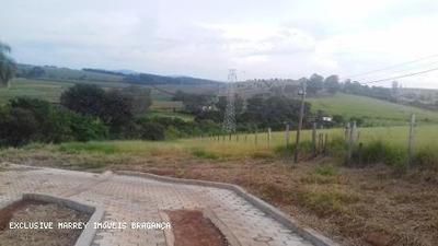Sítio / Chácara Para Venda Em Bragança Paulista, Sítio 1 Alqueire Com Nascente - 3032
