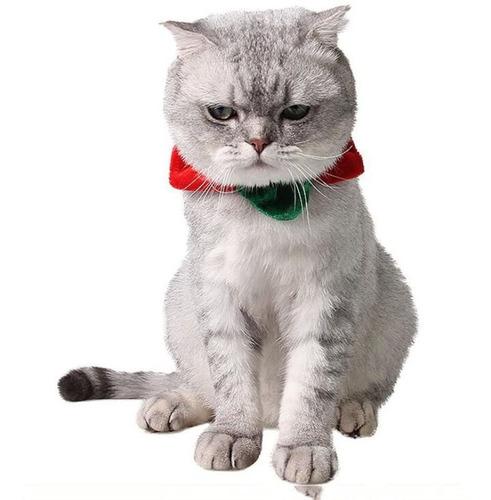 Happy Cat Dog Star Shape Collar Cute Halloween Christm...