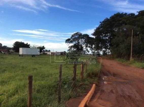 Venda De Terreno / Área Na Cidade De Araraquara 1103