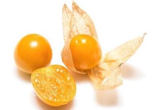 Golden Berries, Uchuva O Physalis Peruviana