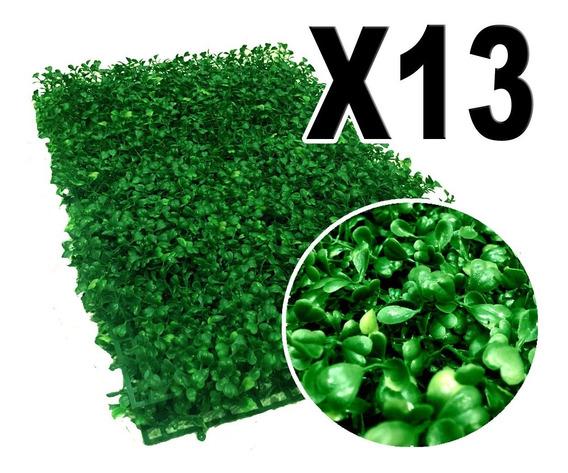 3.12 M2 De Follaje Muro Verde P6 Arrayan Rs13