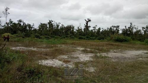 Imagem 1 de 1 de Terreno Para Investimento Shangrilá - 4365ip-1