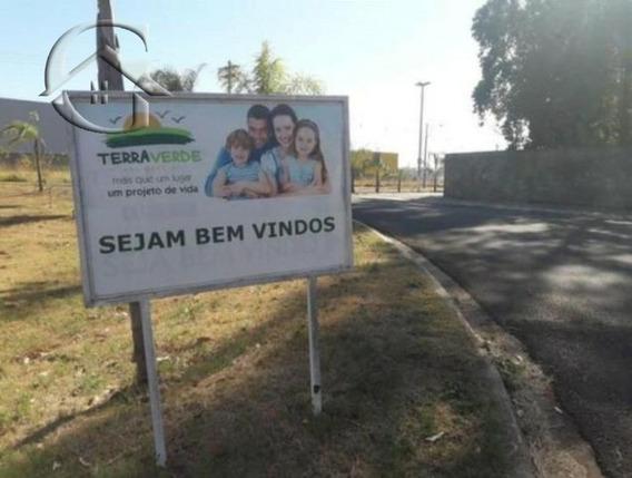 Terreno - Te00044 - 33592076