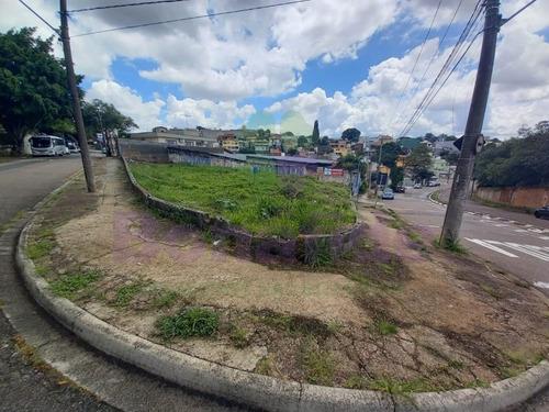 Terreno A Venda E Locação, Jardim Estádio, Jundiaí - Te08081 - 32199381