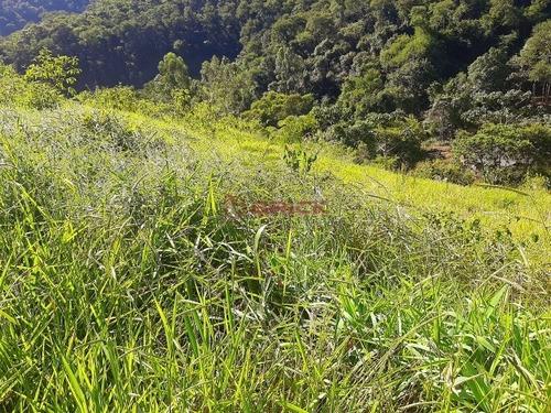 Imagem 1 de 5 de Sítio Com 20 Mil M² Em Córrego Das Pedras - St00212 - 69402408