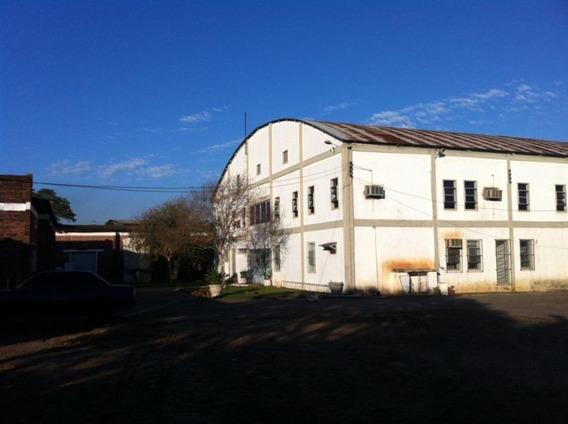 Área Em Vila Imbui, Cachoeirinha/rs De 1780m² Para Locação R$ 10.000,00/mes - Ar349278
