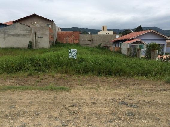 Terreno Residencial Em Penha - Sc, Centro - 140p
