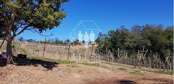 Terreno Com 117.000m2 (11,7ha) De Terra Em Jundiaí, Bairro Pinheirinho/represa. - Fa00004 - 32977275