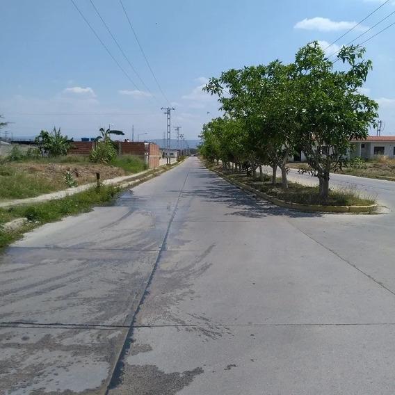 Elisha Dcesare Vende Terreno En Flor Amarillo, Valencia