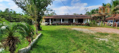 Chácara Com 3 Dormitórios À Venda, 3000 M² Por R$ 300.000,00 - Parque Serra Mar - Peruíbe/sp - Ch0163