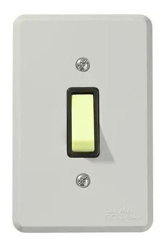 Kit 10pçs Interruptor 1tecla Paralelo C/placa Cz Mec-tronic