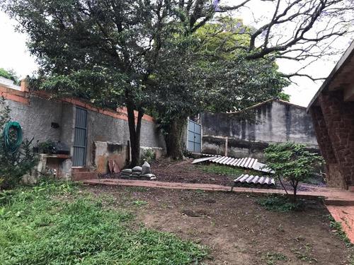 Terreno Parque Anchieta São Bernardo Do Campo - 1033-13205