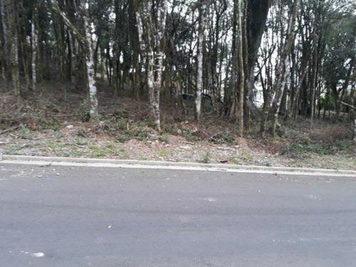 Terreno - Bairro Floresta - Te03345