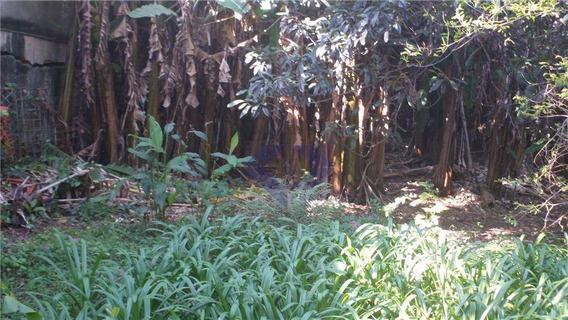 Terreno Comercial Com Casa Antiga Só Vale O Terreno, Com 10x50= 500m - Te0293