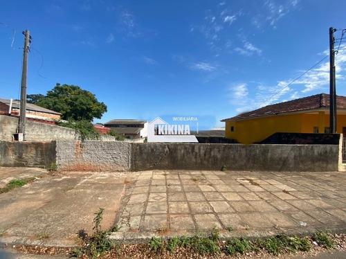 Terreno Para Venda - 02950.8979