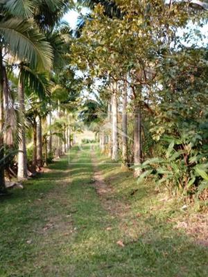Sitio Em Barra Velha, Com 144.000,00 M². Duas Casas De Alvenaria, 7 Lagoas...... - St001
