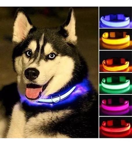 Collares Led Luminosos Para Mascotas Perros Y Gatos