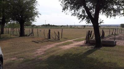 Se Alquila Campo De 1 Ha En La Cañada - Posta De Hierro