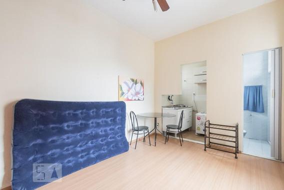 Apartamento Para Aluguel - Botafogo, 1 Quarto, 20 - 893011248