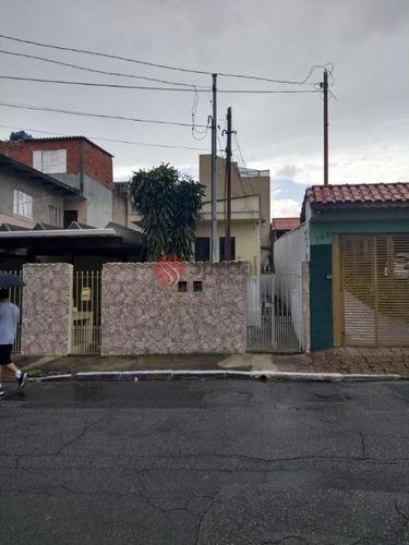 Terreno À Venda, 500 M²  -vila Formosa, A 50m Da Avenida Renata - Ta6212