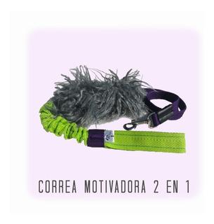 Correa Motivadora / Para Perros / 2 En 1
