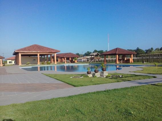 Terreno Padrão Em Santa Isabel Do Pará - Pa - Te0016_dkza