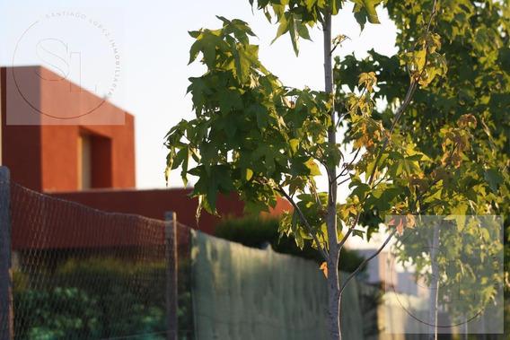 Oportunidad En Casas Santa Maria (villanueva) De Eidico
