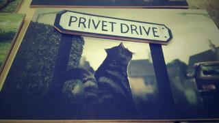 Placa Privet Drive - Rua Dos Alfeneiros - Harry Potter.
