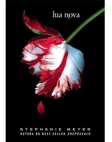 Saga Crepúsculo 4 Livros Stephenie Meyer (4063)